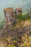 Pha-Ngam Noi: Afloramento de rocha gêmeo do granito com as plantas verdes e roxas com a nuvem movente no fundo em Kew Mae Pan Imagem de Stock