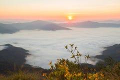 Pha Tung Mountain Royalty Free Stock Image