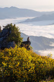 Pha Tung Mountain Royalty Free Stock Photography