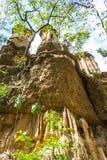 Phachor w Doi Lo Chiangmai, Uroczystego jaru park narodowy, Thail Zdjęcia Stock