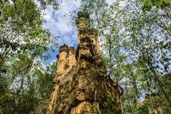 Phachor w Doi Lo Chiangmai, Uroczystego jaru park narodowy, Thail Fotografia Stock