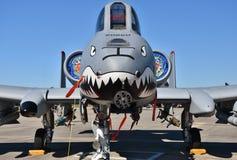 Phacochère de l'Armée de l'Air A-10/coup de foudre II Image stock