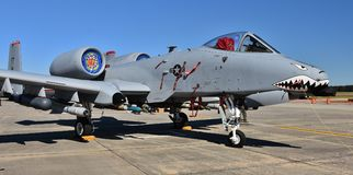 Phacochère de l'Armée de l'Air A-10/coup de foudre II Photo libre de droits