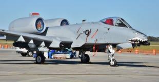Phacochère de l'Armée de l'Air A-10/coup de foudre II Images stock