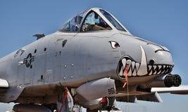 Phacochère de l'Armée de l'Air A-10/coup de foudre II Photographie stock libre de droits