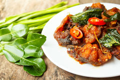 Phad Phed Pla Duk Thod Krob (Stir fried Deep fried Catfish with Stock Photos