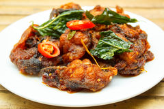 Phad Phed Pla Duk Thod Krob (Stir fried Deep fried Catfish with Stock Image