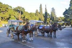 Phaeton (carriage) Royalty Free Stock Photos