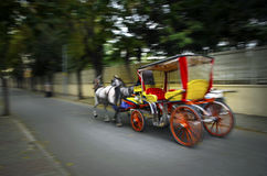 Phaeton Horse Carriage. In the fall Buyukada Phaeton. Horse Carriage. The symbol of the Islands is the transportation vehicle phaetons. Adalar in Marmara Sea Royalty Free Stock Images