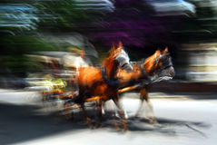 Phaeton zoom in. Horse carriage at Prince Island ,in İstanbul,Turkey royalty free stock photo