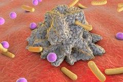 Phagocytosis. Macrophage engulfing bacteria of different shapes Royalty Free Stock Photos