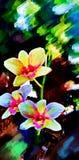 Phalaenopsis dell'orchidea fotografie stock