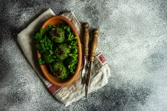 Phali georgiano tradicional del plato imagenes de archivo