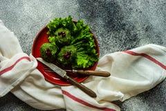 Phali georgiano tradicional del plato fotografía de archivo