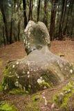 Phallic Rock in Palaau State Park Molokai Royalty Free Stock Image