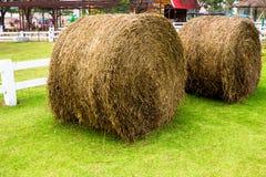 Pham sheep straw roll Stock Image