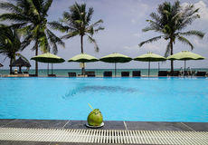 Swimming pool at seaside hotel in Vietnam. Phan Thiet, Vietnam - Mar 26, 2017. Swimming pool with a coconut fruit in Phan Thiet, Vietnam. Phan Thiet belongs to Stock Photos