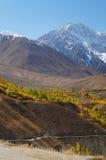 Phandar-Tal im Herbst, Nord-Pakistan lizenzfreie stockbilder