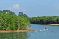 Phang Nga bay Royalty Free Stock Photos