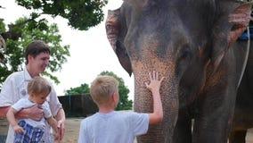 Phangan, Tailândia As trocas de carícias da família o elefante e alimentam-lhe bananas vídeos de arquivo