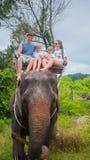 Phangan, Thailand Das Familienreiten auf Elefanten im tropischen Wald Stockbilder
