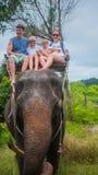 Phangan Thailand Familjridningen på elefanter i den tropiska skogen Arkivbild