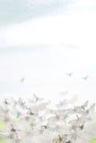 phantasie Nacht-Fliegen im Himmel Anstrich mit farbiger Kreidekerze lizenzfreie stockfotografie