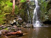 Phantom Falls Landscape Victoria Australia Fotografia de Stock
