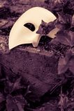 Phantom of the Opera mask. On a crumbling stone surrounded by ivy Stock Photos