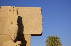 Pharao, das bei Karnak Ägypten schnitzt Lizenzfreie Stockfotos
