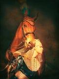 Pharao mit der Pferdenweinlese getont Lizenzfreies Stockfoto