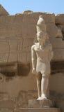 Pharaoh Imágenes de archivo libres de regalías
