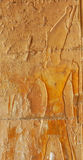 Pharaoh. (possibly Tuthmoses III) wearing the double crown of upper and lower Egypt, at the mortuary temple of Queen Hatshepsut at Thebes in Egypt Stock Images
