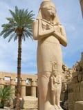 pharaoh Royaltyfri Bild