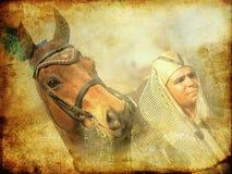 Pharaoh con l'annata del cavallo modificata Fotografia Stock Libera da Diritti
