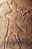 Pharaoh hieroglyph. In Edfu Temple Royalty Free Stock Photos
