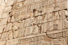 Pharaoh przy ścianą Karnak świątynia - Egipt Obraz Royalty Free