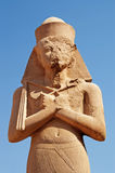 Pharaoh statue Royalty Free Stock Image