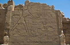 Pharaoh Zabija jego wrogów Fotografia Stock