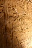 Pharaohs med guden på templet av Horus Royaltyfria Foton