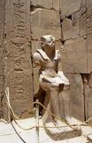 pharaon Стоковое Фото