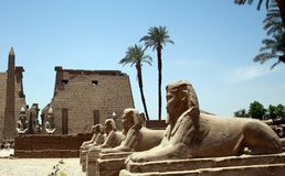 PHARAON statua W świątyni Obraz Stock