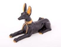 Pharaonic hund royaltyfria bilder