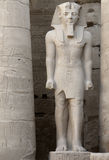 Pharaonic sculpture at Luxor Temple in Egypt Royalty Free Stock Images