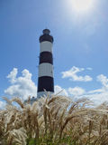 Phare de Chassiron, Ile d'Oleron stock images