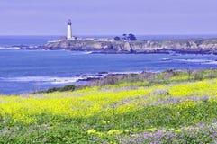 Phare de la Californie Images stock