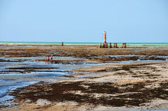 Phare de Maceio photo libre de droits