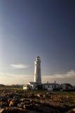 Phare de point de joint dans le cap St Francis, Afrique du Sud Photographie stock libre de droits