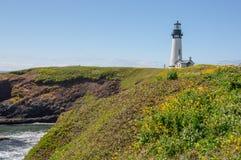 Phare de Yaquina entouré par des wildflowers sur la côte de l'Orégon photographie stock libre de droits