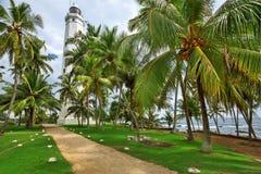 Phare entouré par des palmiers Photographie stock libre de droits